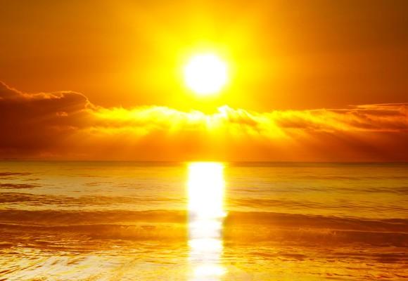 Sunlight inhibits food allergies.