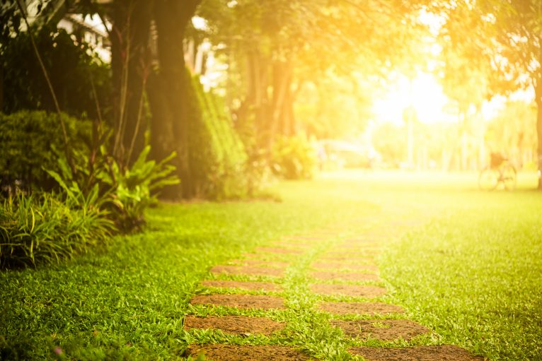 sun exposure stops sepsis